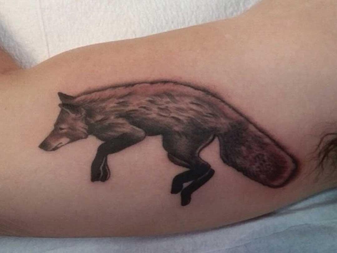BNG FOX ON BICEP
